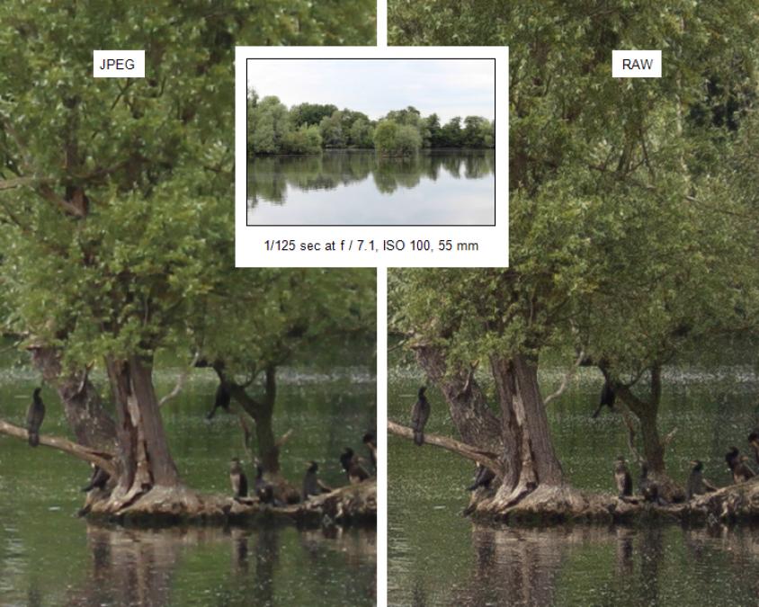 how to take nice photo sony a6000