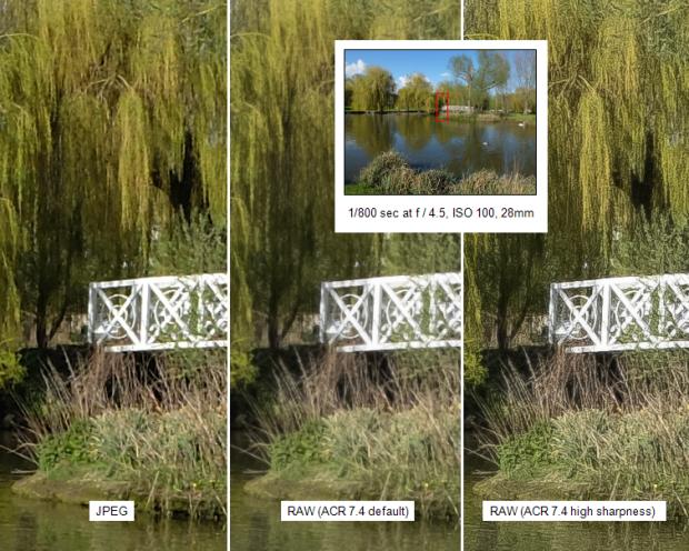 Fujifilm X20 sample shot