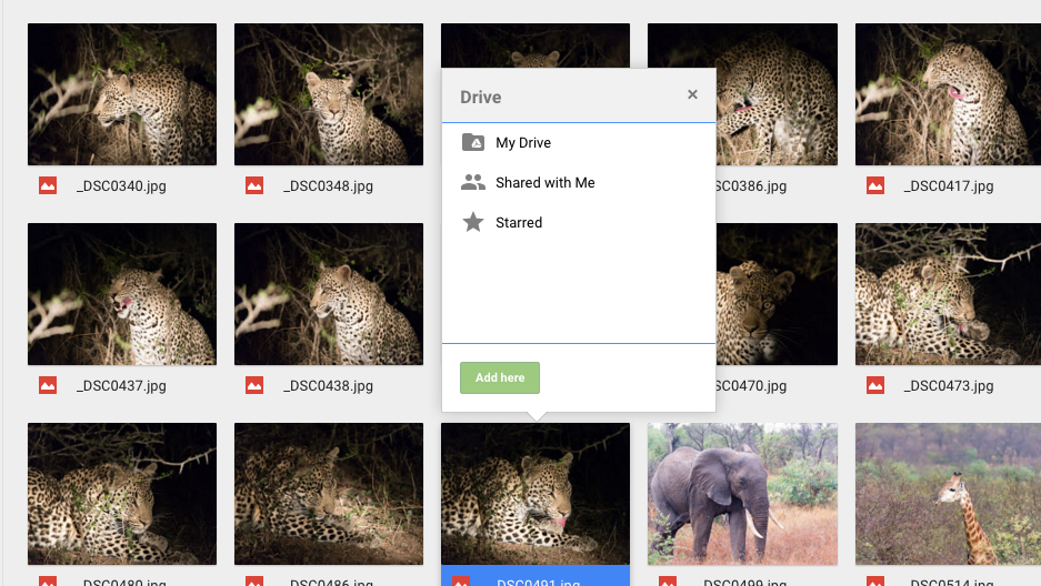 How to add a file to multiple Google Drive folders   Expert