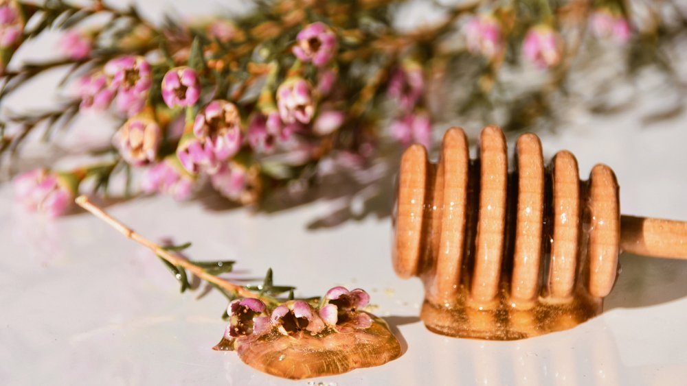 Best manuka honey: Get buzzed about this spreadable superfood