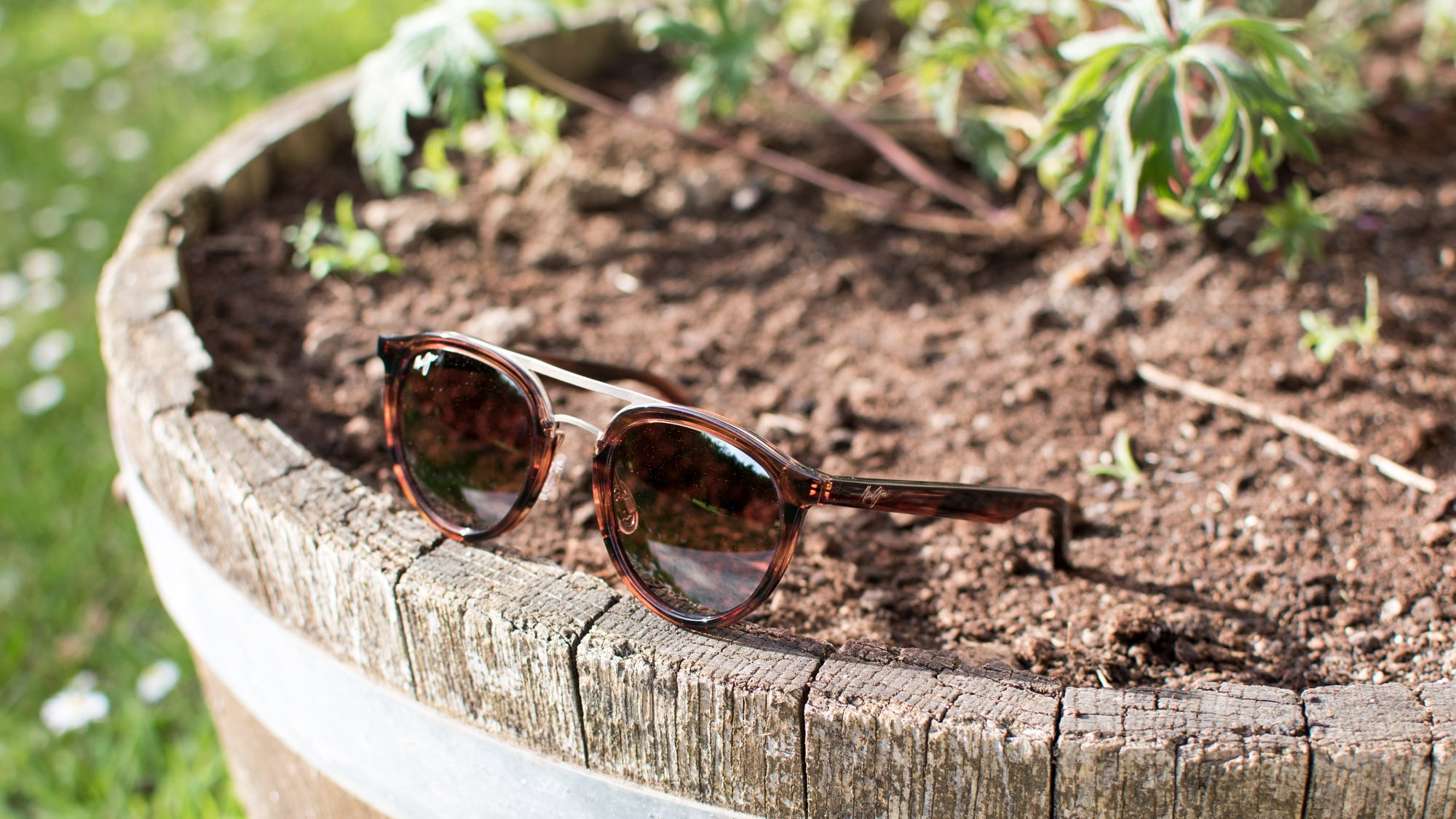 8c0061b1ceed Maui Jim's Italian-made Sunny Days not only look the part but they also  have superb optics. Though we were initially a little unsure of the  pink-tinted ...