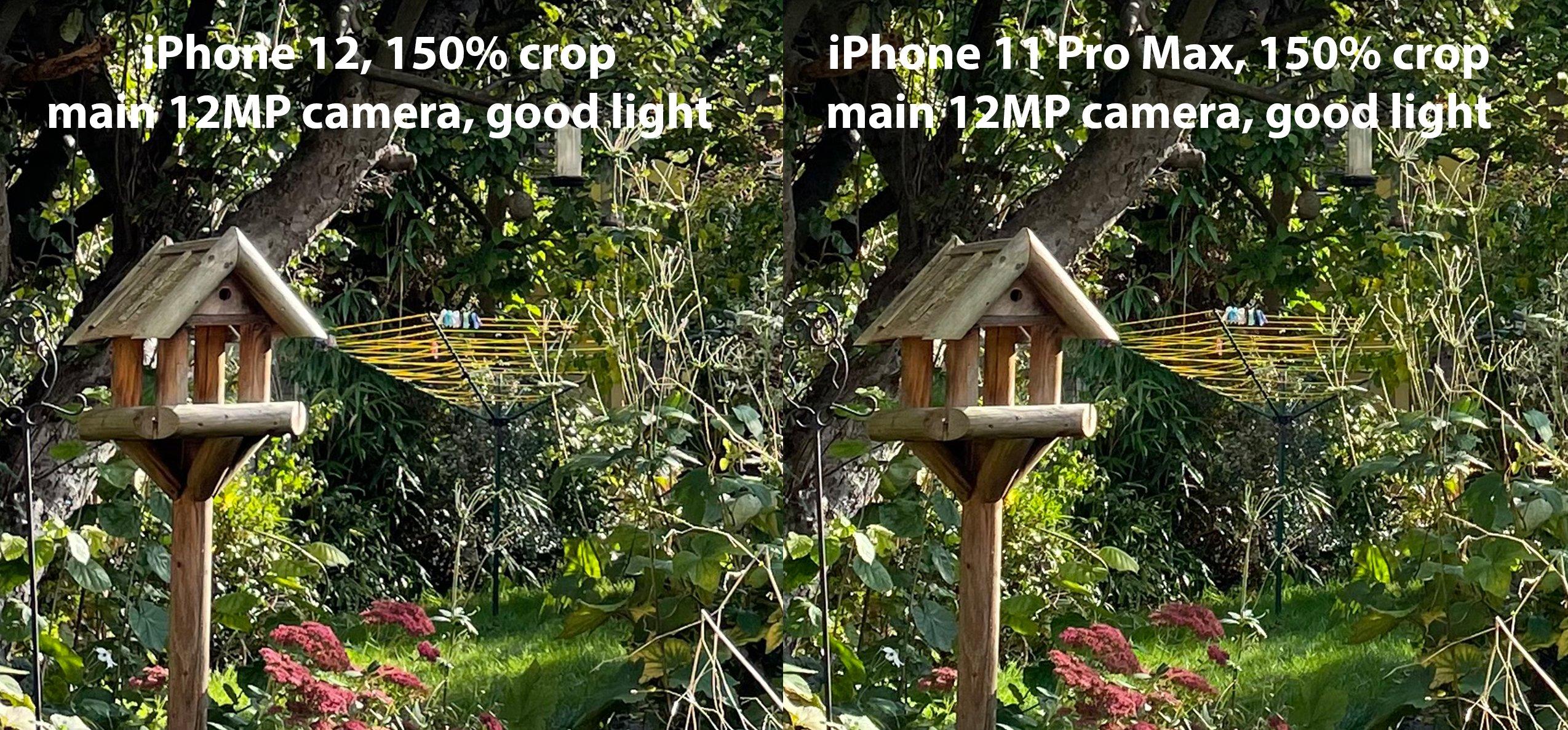iphone_12_vs_iphone_11_pro_max_good_light_main_camera.jpg