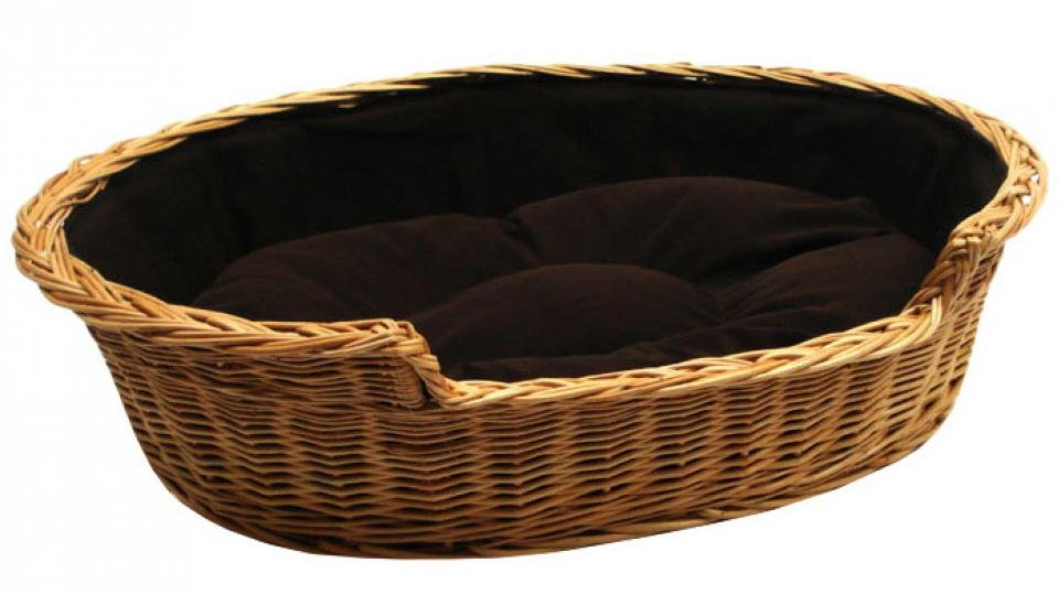 Best Dog Bed The Cosiest Cots And Couches For Your Canine