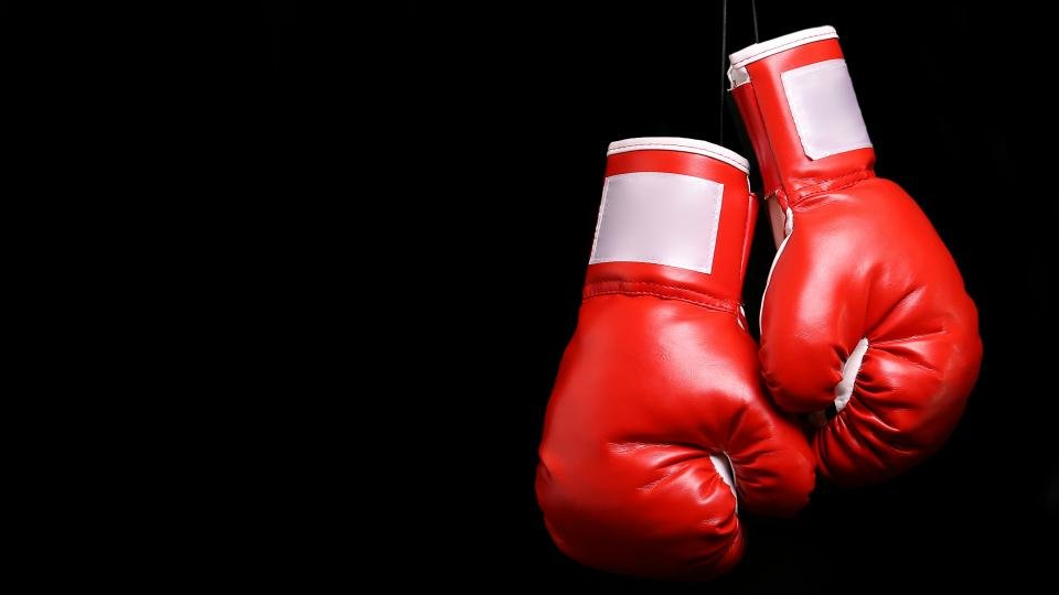 Best boxing gloves 2019: The best gloves around, from