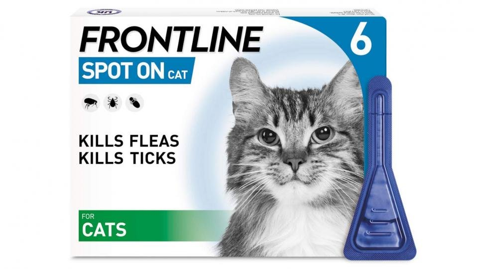 Best cat flea treatment: Keep your cat pest-free from just £4